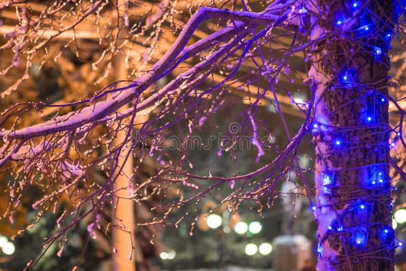 La ville se prépare à la nouvelle année - guirlandes de lumières dans la neige et les branches image stock