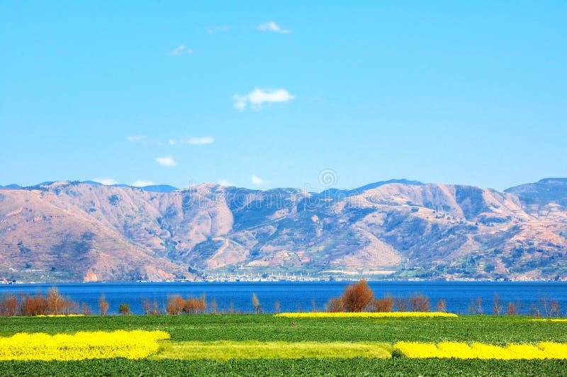 La violenza è spesa sulla riva del lago del lago Erhai