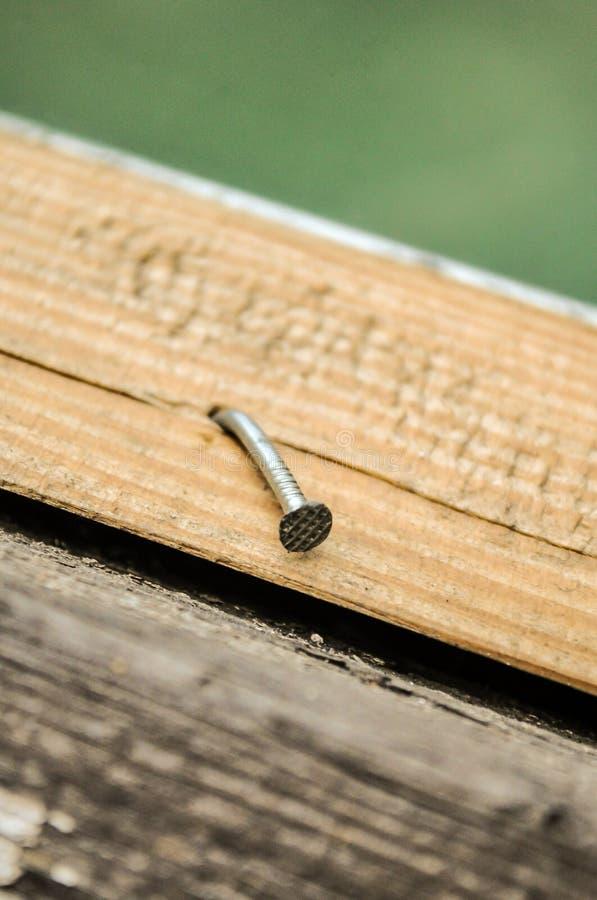 La vis argentée a vissé dans la planche en bois et accrocher photographie stock libre de droits