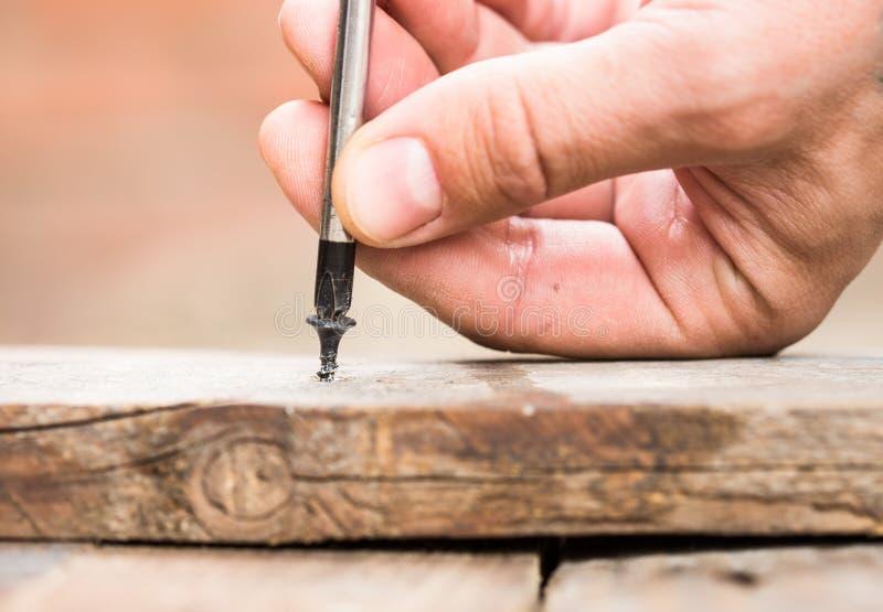 La vis a vissé dans la planche en bois image stock