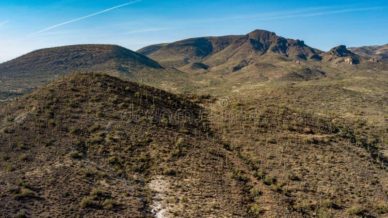 La vista aerea del parco regionale del ranch dell'incrocio del dente cilindrico vicino scava l'insenatura, Arizona fotografie stock libere da diritti
