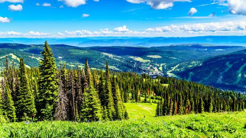 La vista aerea del villaggio alpino del Sun alza negli altopiani di Shuswap in Columbia Britannica, Canada immagine stock