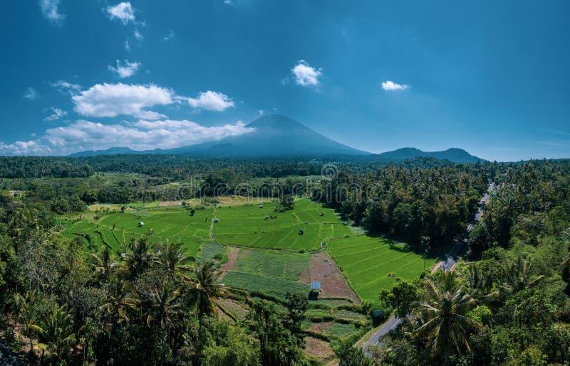 La vista aerea del vulcano ed i bei campi abbelliscono durante il giorno di estate soleggiato in Bali immagini stock