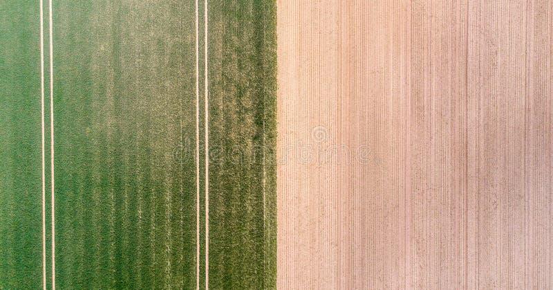 La vista aerea verticale di un campo con verde che germoglia la giovane vegetazione e un giallo ungreen la superficie del campo,  immagine stock