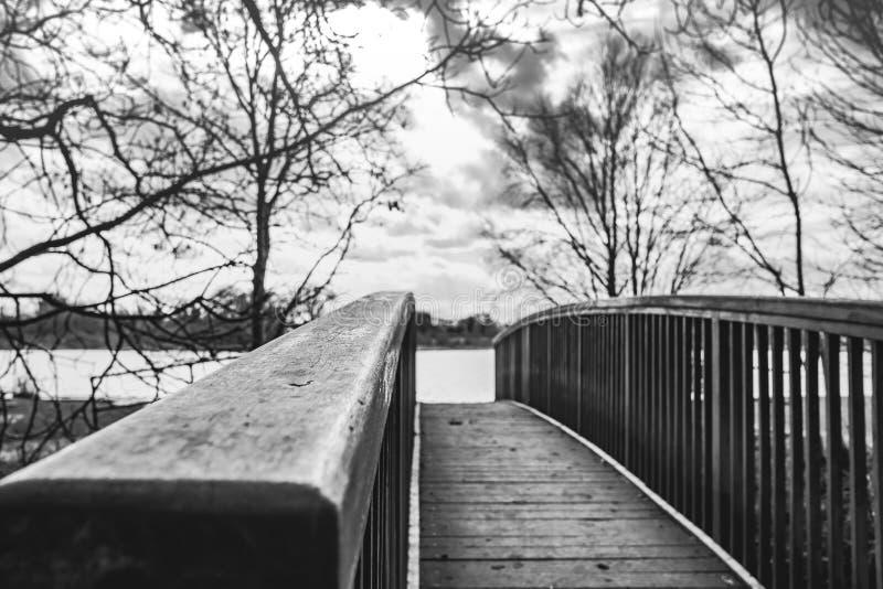 La vista astratta del primo piano di un legname ha sviluppato la conduzione luminosa del piede ad un lago grande e aperto nella d fotografie stock