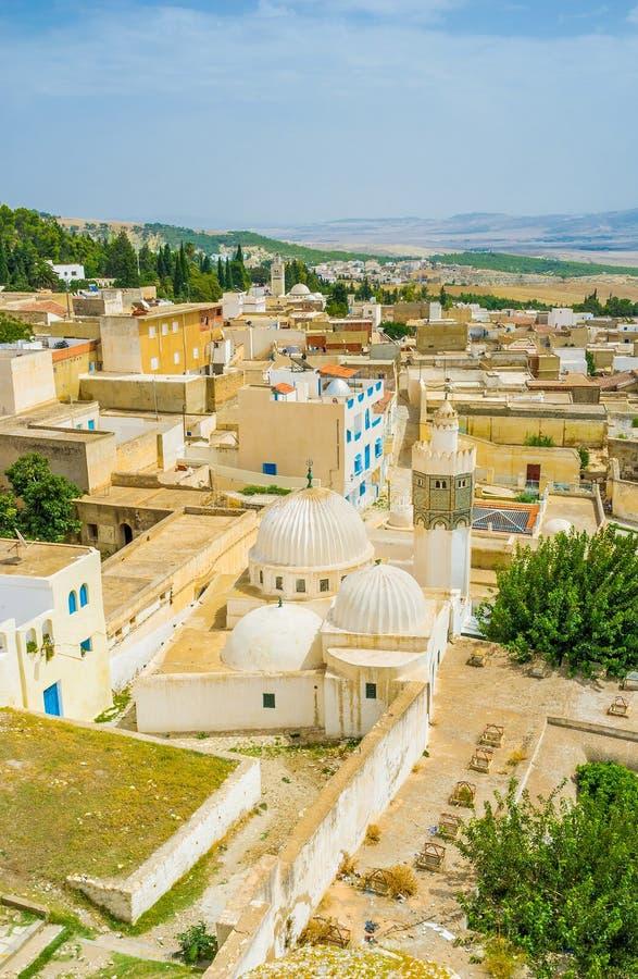 La vista con la vecchia moschea immagine stock libera da diritti