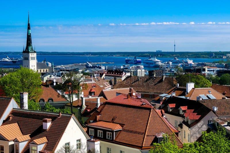 La vista dall'altezza della città di Talin e del Mar Baltico fotografia stock