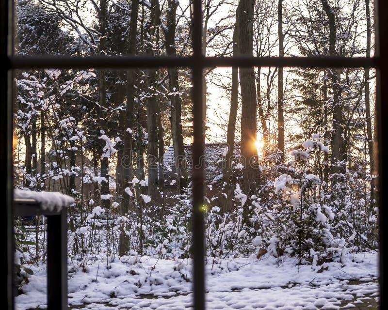 La vista dalla finestra panoramica al paesaggio dell'inverno nella campagna, con gli alberi ha coperto di neve fresca, in case e fotografia stock