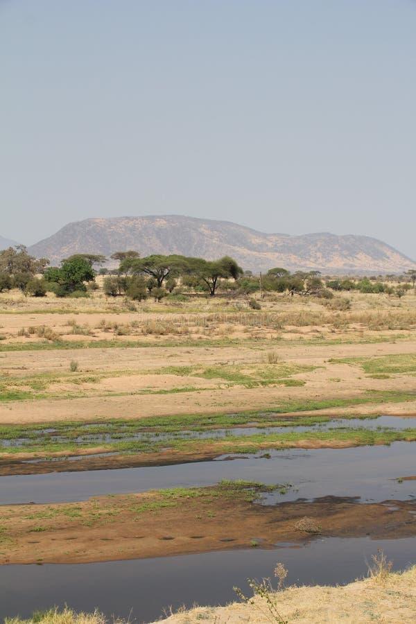 La vista de colinas y de diverso ambiente en el parque nacional del ruaha foto de archivo