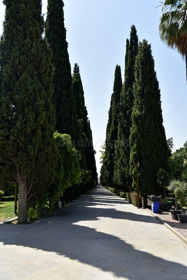 La vista de Eram GardenB?gh-e Eram, Shiraz, Irán fotos de archivo libres de regalías