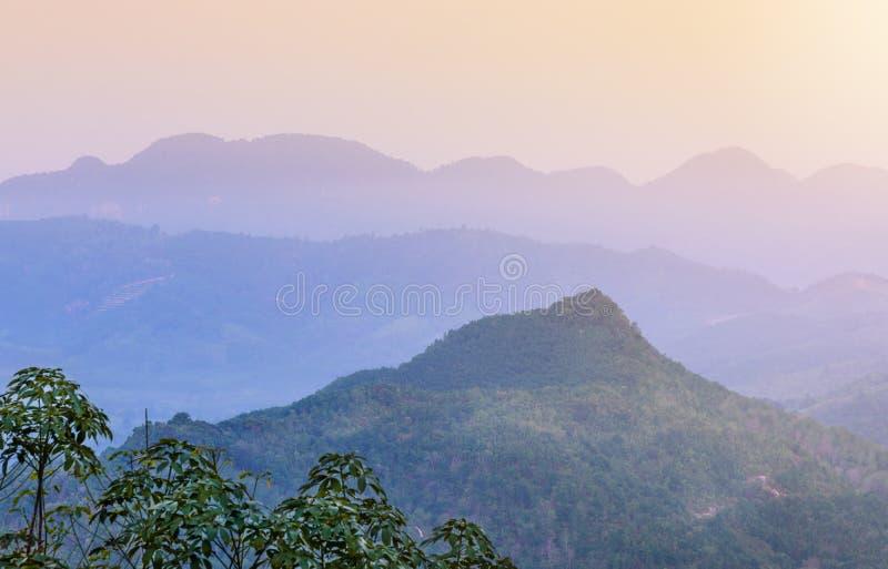 La vista de la montaña con niebla y el árbol ajardinan la naturaleza imagenes de archivo