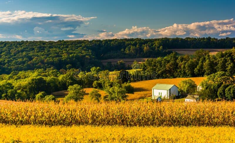 La vista de Rolling Hills acerca a los caminos cruzados, Pennsylvania fotografía de archivo libre de regalías