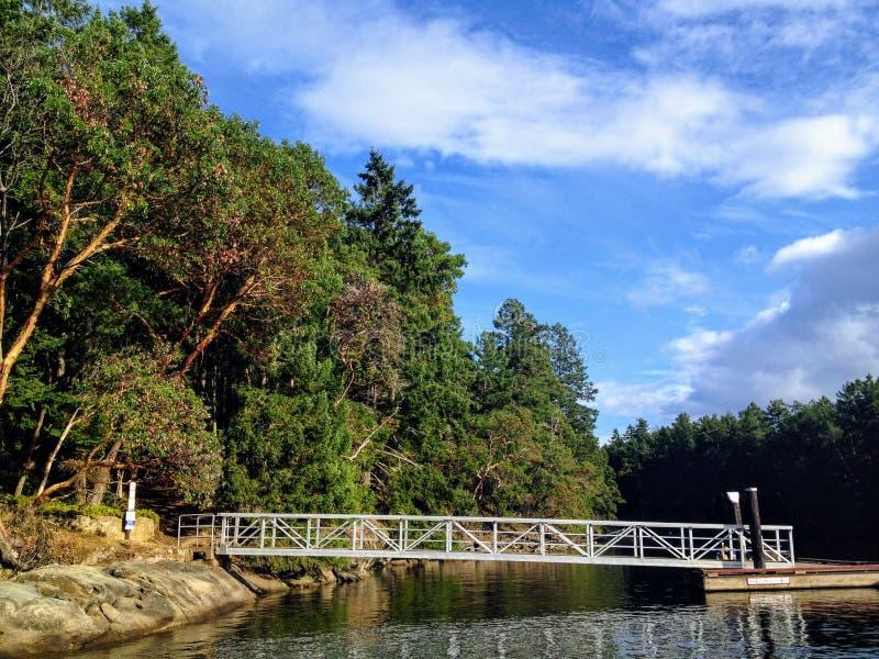 La vista de un pequeños muelle y rampa que llevan a la orilla de una isla hermosa por completo de los árboles del Arbutus foto de archivo libre de regalías