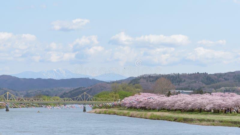 La vista del parque de Tenshochi en la prefectura de Iwate, Japón es famosa por t imágenes de archivo libres de regalías