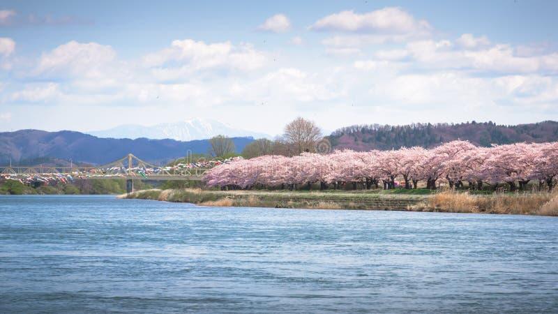La vista del parque de Tenshochi en la prefectura de Iwate, Japón es famosa por t imagenes de archivo
