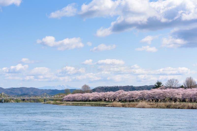 La vista del parque de Tenshochi en la prefectura de Iwate, Japón es famosa por t fotografía de archivo libre de regalías