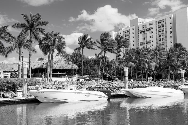 La vista delle barche lussuose e dell'yacht si è messa in bacino in un porticciolo del sud della spiaggia di Miami Concetto di lu immagine stock