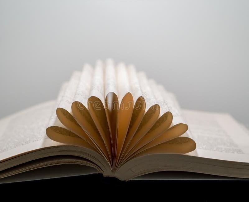 La vista macra del libro pagina crear una forma conceptual de la flor foto de archivo
