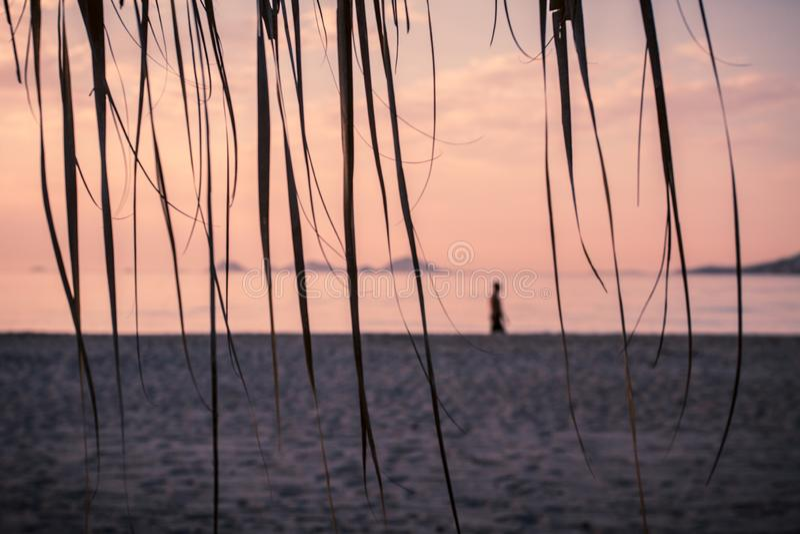 La vista pacifica di refrigerazione lunatica del mare e della spiaggia con i parasoli a colore del chillout del tramonto ha spacc immagini stock libere da diritti