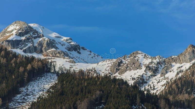La vista panorámica del país de las maravillas idílico del invierno con la montaña remata en las montañas en un día soleado con e fotos de archivo