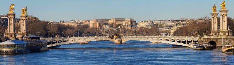 La vista panoramica del ponte famoso di Alexandre III a Parigi, Francia fotografia stock
