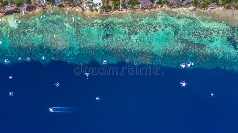 La vista a?rea de los barcos filipinos que flotan encima de las aguas azules claras, Moalboal es un oc?ano azul limpio profundo y foto de archivo