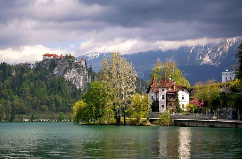 La vista scenica del lago ha sanguinato con il castello, le ville e le montagne coperti dalle nuvole su fondo a primavera, Sloven fotografia stock