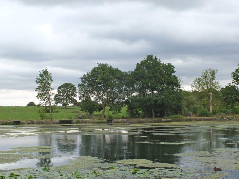 La vista scenica della riva di un lago calmo con il cielo nuvoloso grigio e gli alberi ed erba ha coperto le colline lungo la ban immagini stock