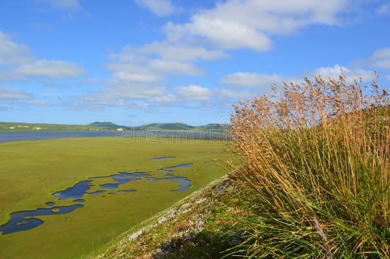 La vista sul comandante Islands fotografie stock libere da diritti