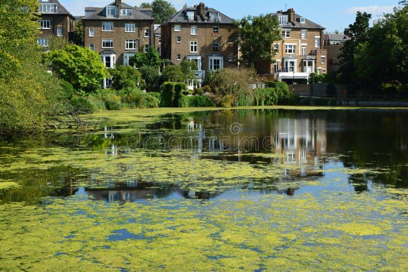 La vista in tensione del giardino della brughiera di Londra Hampstead del lago dei laghi che sviluppano i pranzi a casa in tensio fotografie stock