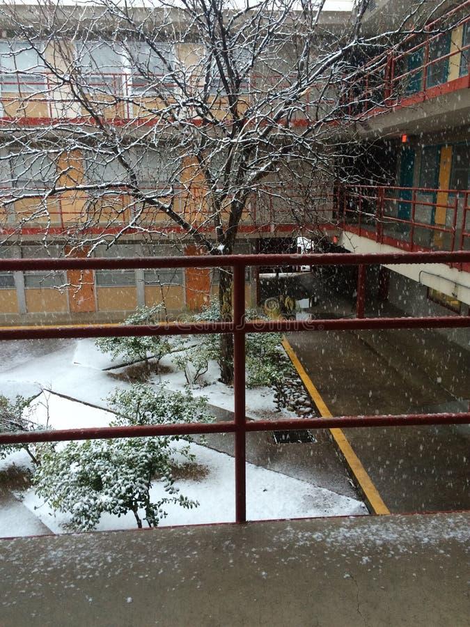 La vita del dormitorio nei cruces ed in di las sta nevicando immagine stock