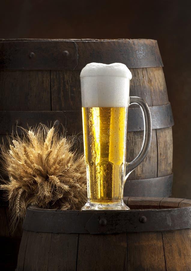 La vita tranquilla con birra fotografia stock libera da diritti