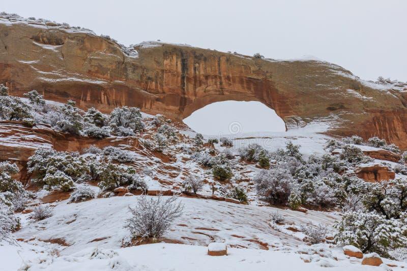 La voûte de Wilson Moab Utah en hiver image stock