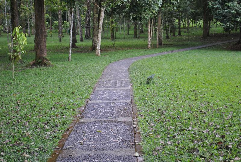 La voie dans le jardin botanique de Bedugul Bali photos stock