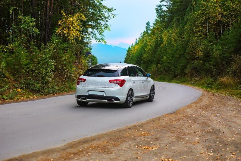 la voiture monte sur la route d'enroulement dans une forêt d'automne images libres de droits