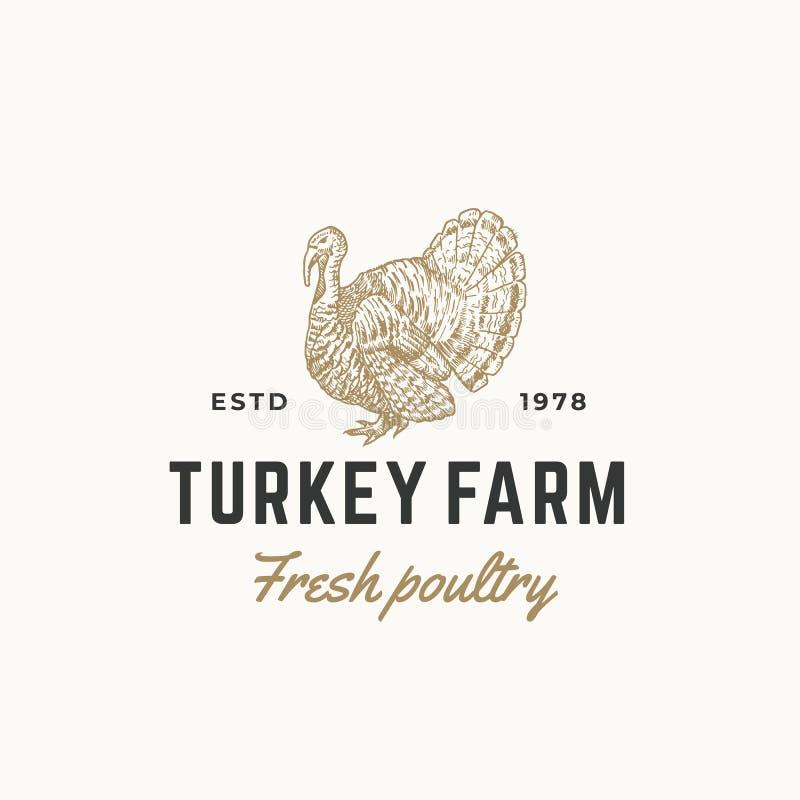 La volaille fraîche de ferme de la Turquie soustraient le signe, le symbole ou le Logo Template de vecteur Croquis de gravure tir illustration libre de droits
