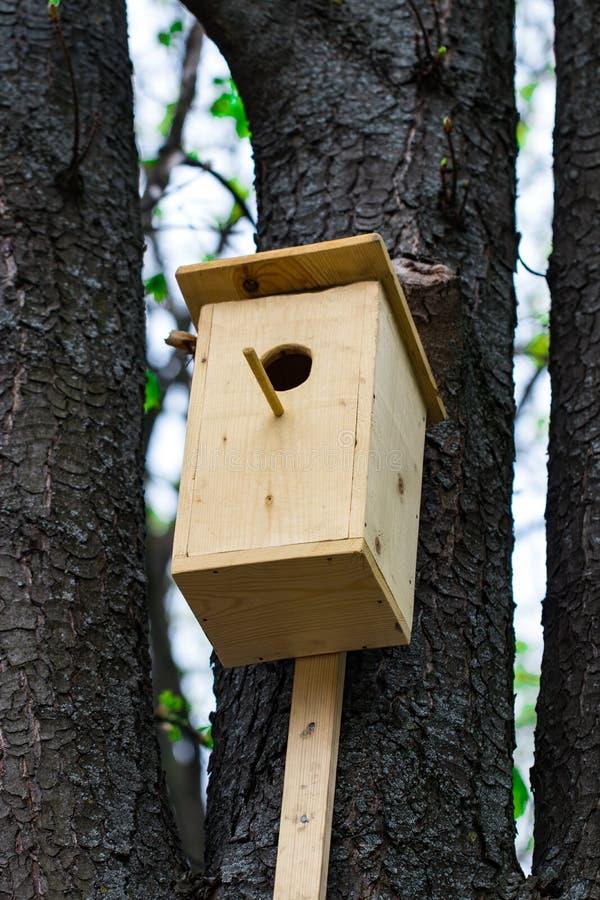 La volière en bois sur une forêt d'arbre au printemps photographie stock