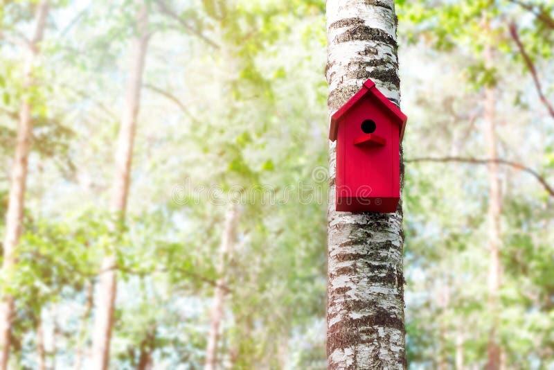 La volière rouge sur une forêt d'arbre au printemps photo stock