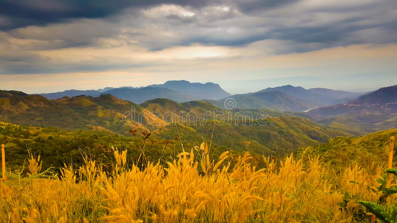 La vue aérienne avec la montagne, le ciel et l'herbe fleurissent images libres de droits