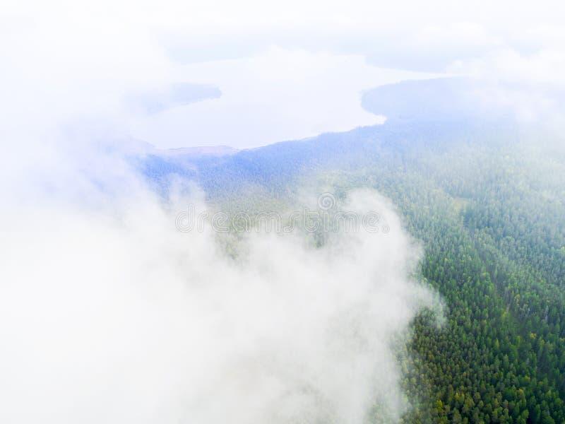 La vue aérienne de bourdon opacifie au-dessus du nuage bas menteur vert de forêt Vue aérienne de forêt tropicale tropicale finie  photographie stock