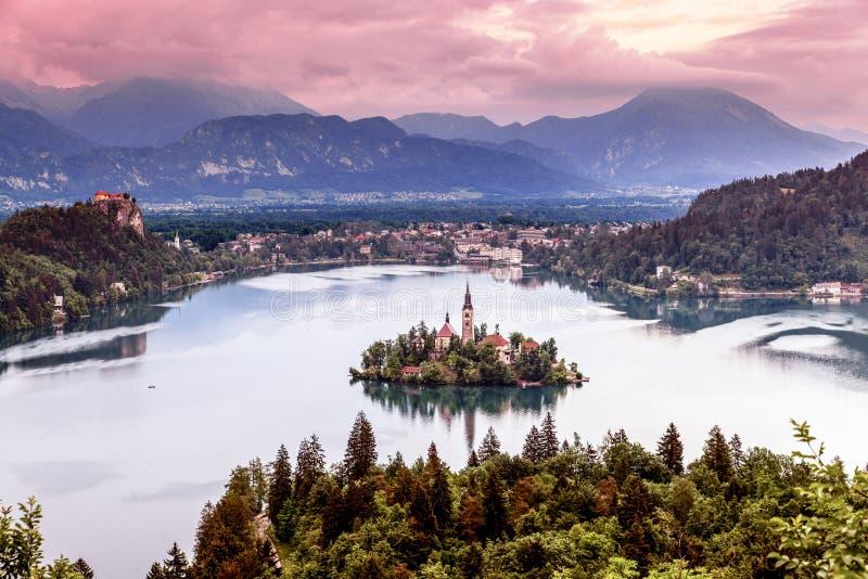 La vue aérienne de l'église de l'hypothèse dans le lac a saigné photographie stock libre de droits