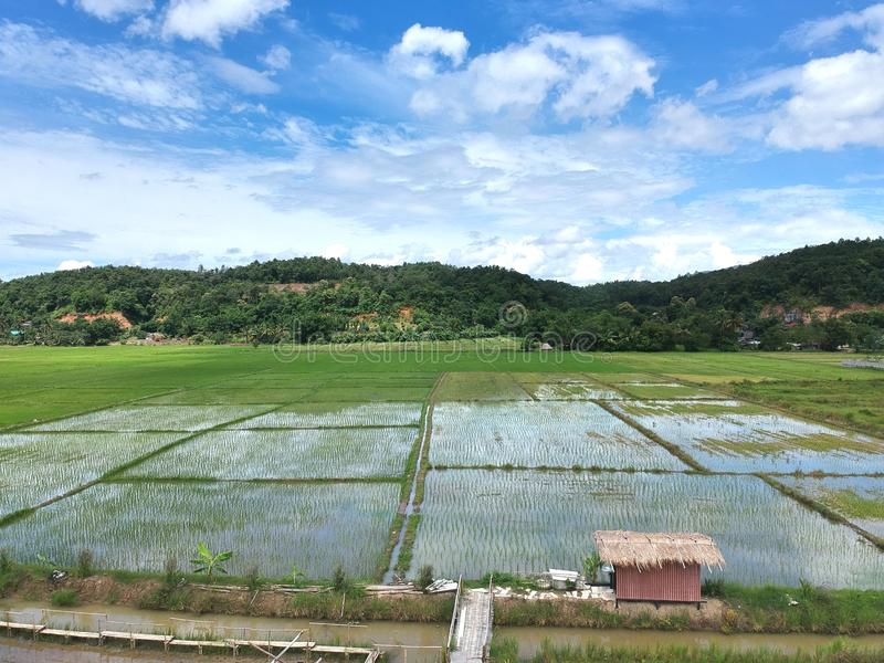 La vue aérienne de la ville de dao de chiang, chiangmai Thaïlande photographie stock libre de droits