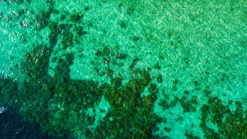 La vue aérienne des plongeurs préparent pour plonger au milieu de la mer photo libre de droits