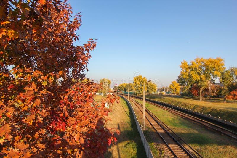 La vue aérienne du bourdon sur la route ferroviaire entre les arbres aménagent le fond en parc avec la vieille voie ferroviaire image stock