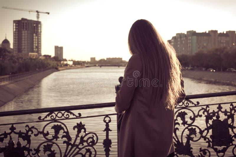 La vue arrière de la sépia aux cheveux longs de femmes a modifié la tonalité, rétro images stock