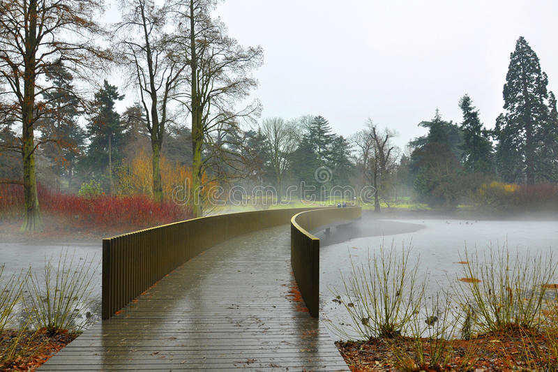 La vue brumeuse du lac figé dans Kew fait du jardinage photographie stock libre de droits