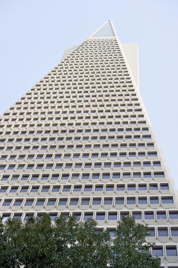 La vue d'angle faible de la pyramide San Francisco de Transamerica a conçu par William Pereira image libre de droits