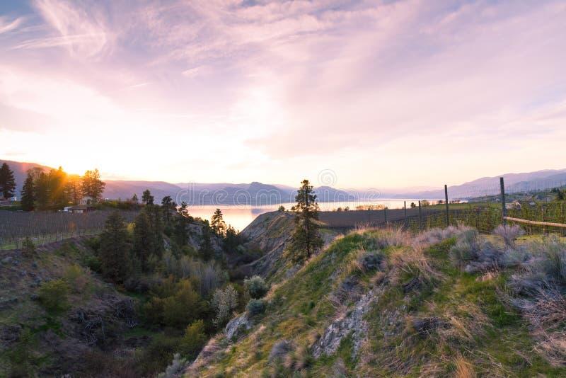 La vue de coucher du soleil du banc de Naramata, le lac Okanagan, et les montagnes d'un pont en chevalet sur le rail de vallée de photographie stock libre de droits