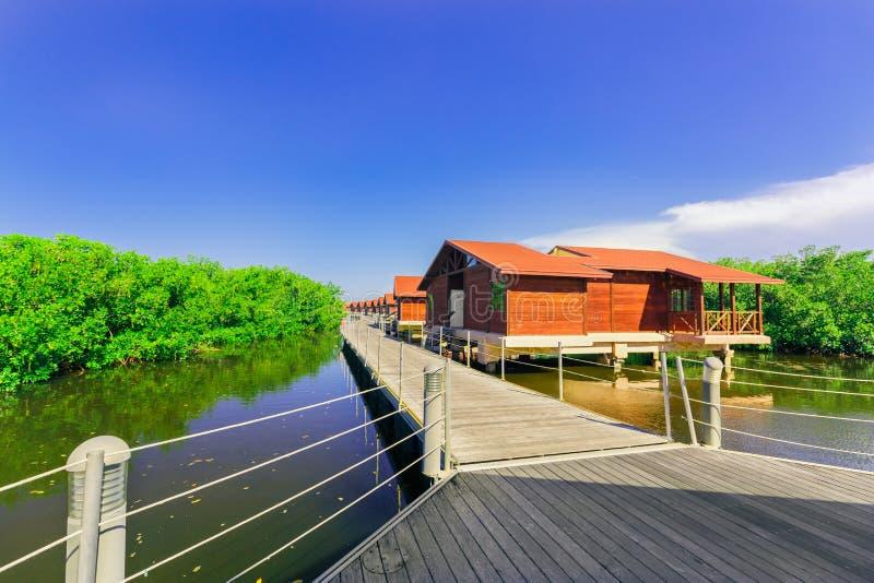 La vue de invitation stupéfiante des au sol d'hôtel avec la villa loge la position en eau de mer naturelle dans le jardin tropica photographie stock