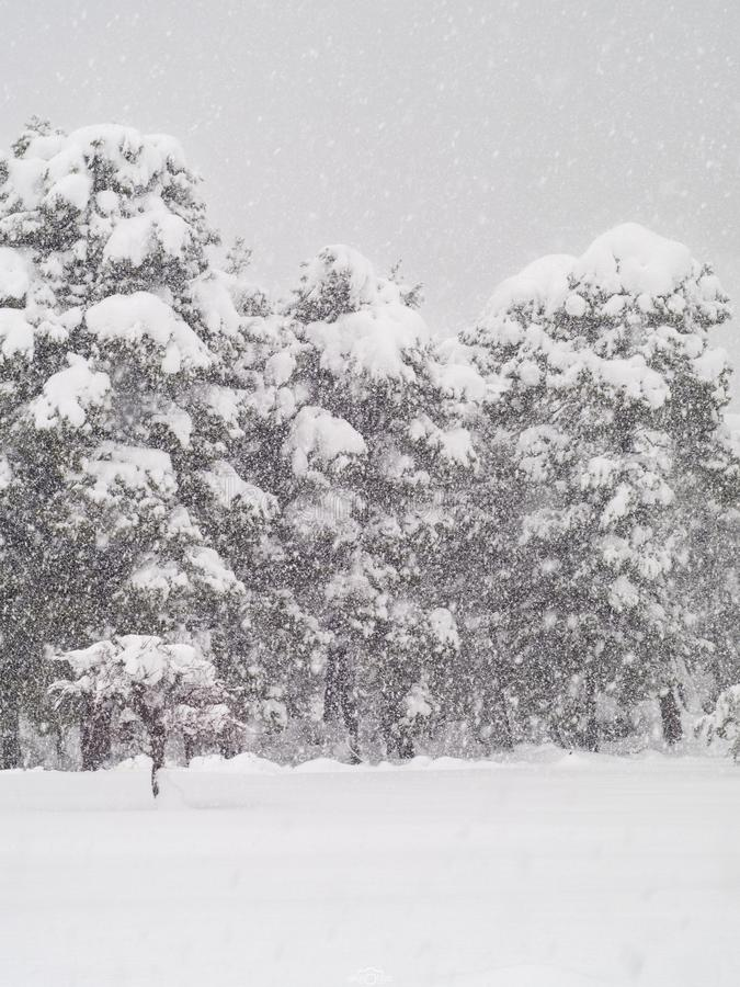 La vue de la neige a couvert la montagne Dirfys et le ciel de nuages un jour ensoleillé sur l'île d'Evia, Grèce photographie stock
